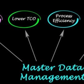 The Confusion About Master Data Management: Why It Exists and What You Can Do